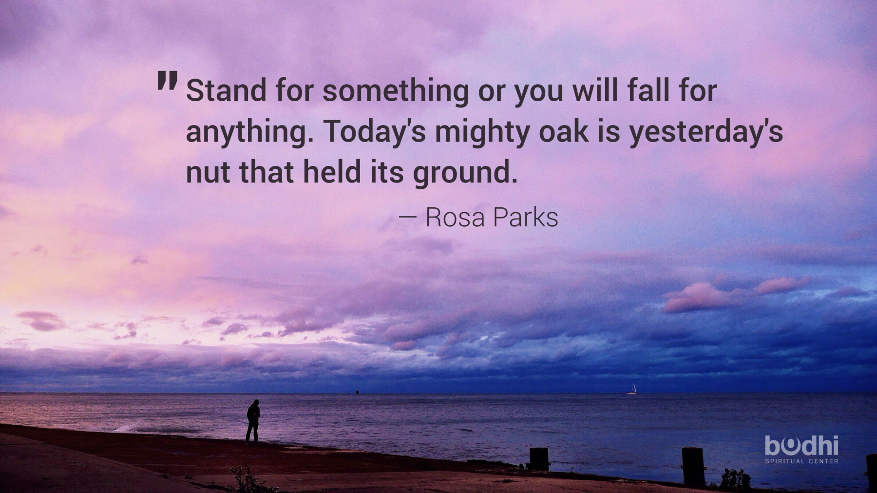 Wednesday Wisdom: Rosa Parks On Standing For Something - Bodhi ...