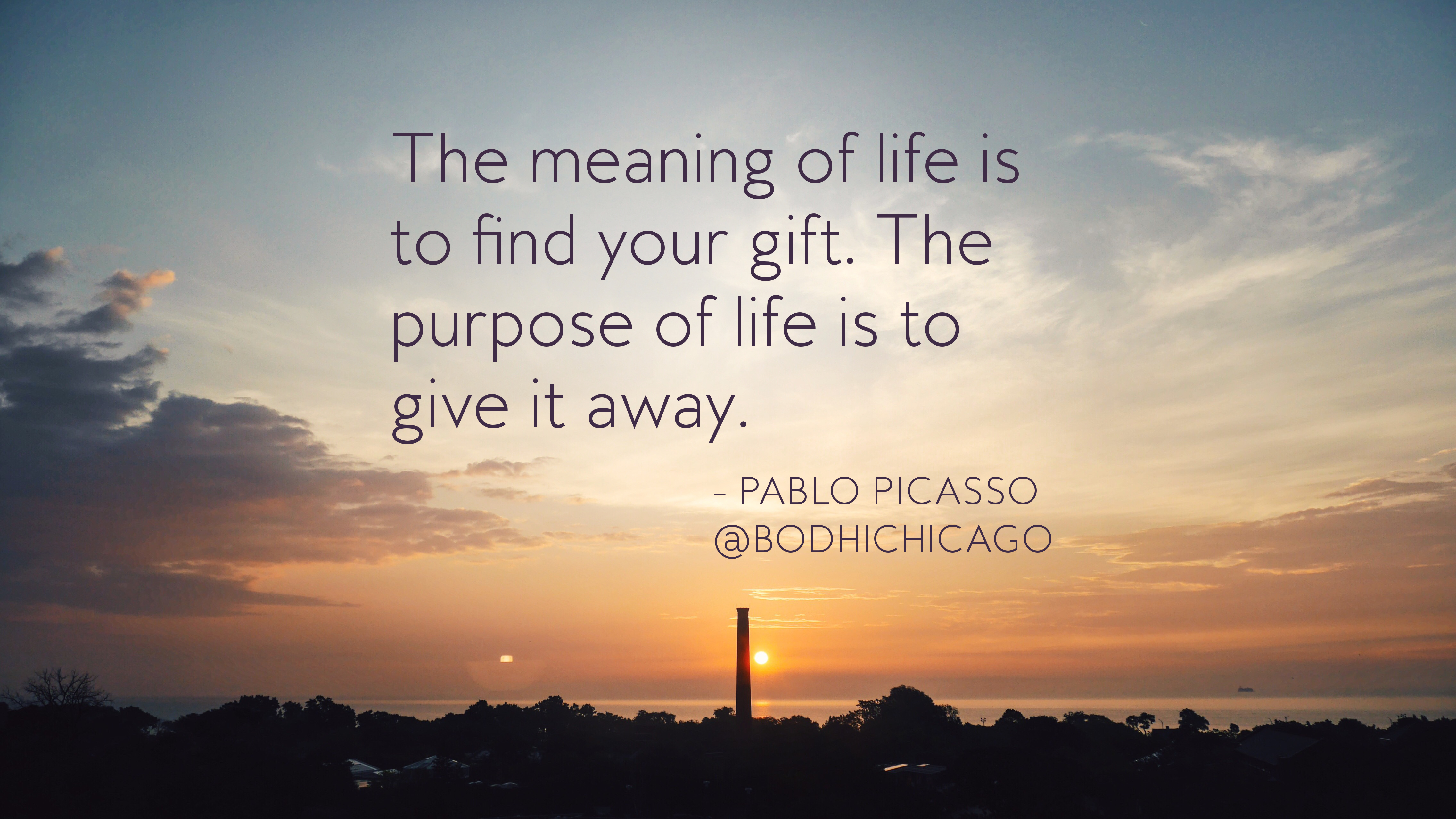 Wednesday Wisdom Quote Pablo Picasso On Lifes Meaning And Purpose