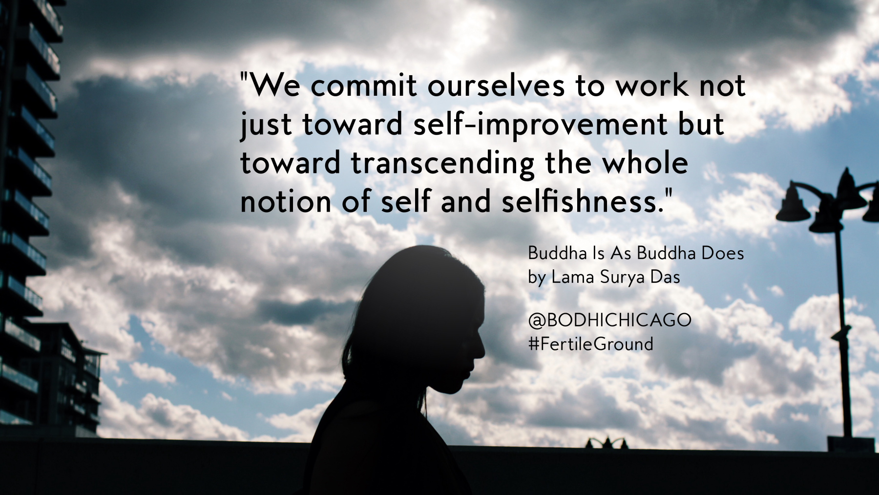 Wednesday Wisdom Quote Lama Surya Das On Transcending Self Bodhi