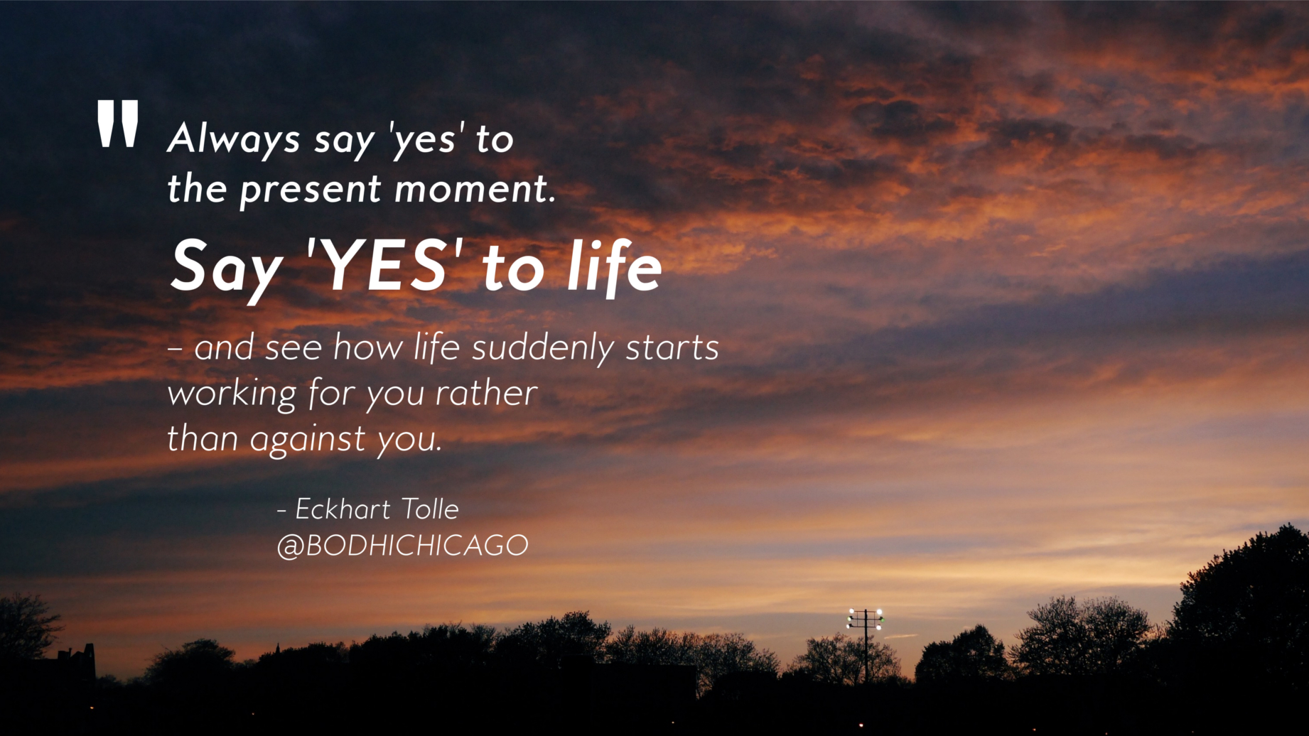 Wednesday Wisdom Quote Eckhart Tolle On Saying Yes To